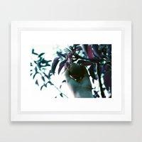 Backyard Pear Framed Art Print
