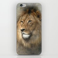 African Dreaming iPhone & iPod Skin