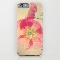 Pink Iceland Poppies in the Sun, Spring Botanical Papaver nudicaule iPhone 6 Slim Case