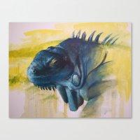 Green Iguana (Iguana Igu… Canvas Print