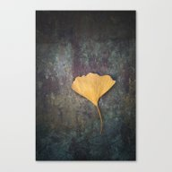 Ginkgo Leaf Canvas Print