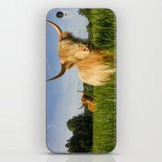 Highland Cattle   iPhone & iPod Skin