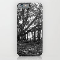 iPhone & iPod Case featuring Everglades. by Noah Bolanowski