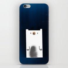 Polar Night iPhone & iPod Skin