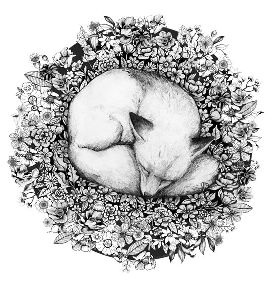 Fox Sleeping in Flowers Art Print