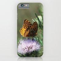Aphrodite Fritillary  iPhone 6 Slim Case
