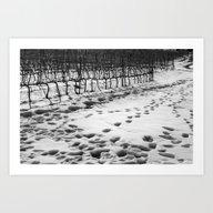 Snowy Vineyard Art Print