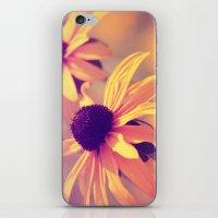 Yellow Flower - Rudbeckia iPhone & iPod Skin