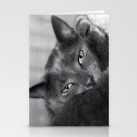 Finlay Stationery Cards