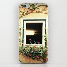 Window and ivy iPhone & iPod Skin