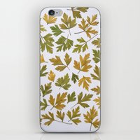 Parsley Autumn iPhone & iPod Skin