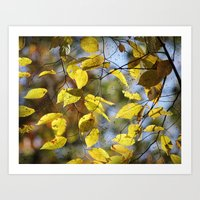 Dreaming Of Yellow Leave… Art Print