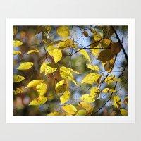 Dreaming Of Yellow Leave… Art Print