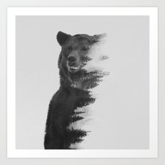 Observing Bear (black & … Art Print