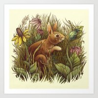 The Cottontail And The K… Art Print