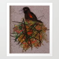 Red-winged Art Print