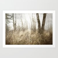 MIMICKED FORMS IN A MYSTERIOUS WOOD Art Print