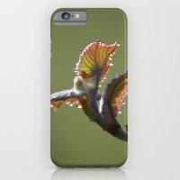 Dew In Spring - A Nature… iPhone 6 Slim Case