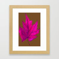 Maple Sugar Model Framed Art Print