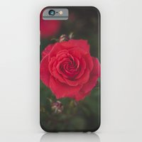 iPhone & iPod Case featuring Red Rose by Gilganizer