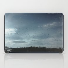 Birds Everywhere iPad Case