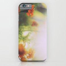 Marigolds in Ubud iPhone 6 Slim Case