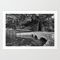 Newton Park Bridge. Art Print
