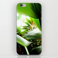 Jungle Light iPhone & iPod Skin
