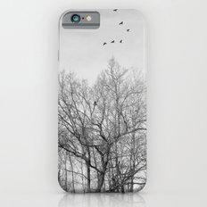 Crows Slim Case iPhone 6s