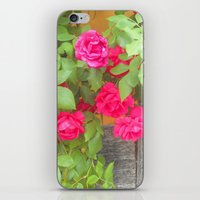 Tudor Rose iPhone & iPod Skin