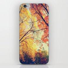 Autumn Embrace iPhone & iPod Skin