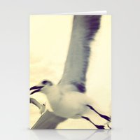 Gull, closeup  Stationery Cards