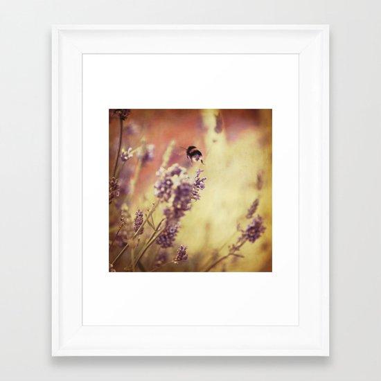 {flight of the bumblebee} Framed Art Print