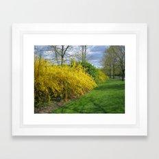 park pic 040 Framed Art Print