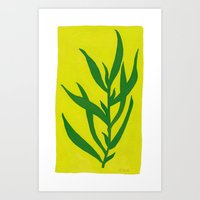 Leaf Shadow Art Print