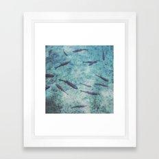 Fishes 2 Framed Art Print