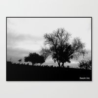 Melancholy Zone Canvas Print