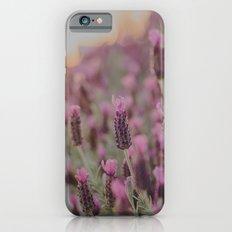 Lavender Stories iPhone 6s Slim Case
