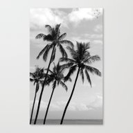 Canvas Print featuring Palm Trees Hawaii by Derek Delacroix
