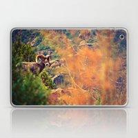 Bighorn Laptop & iPad Skin