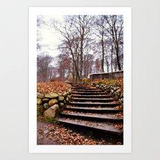Silkeborg Art Print