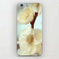 Flourish iPhone & iPod Skin