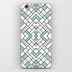PS Grid 45 Mint iPhone & iPod Skin