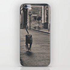 Running Dog iPhone & iPod Skin