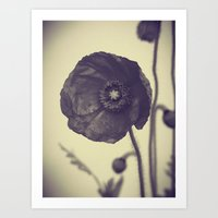 Nature In Black And Whit… Art Print