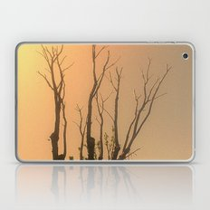 Spiritual trees Laptop & iPad Skin