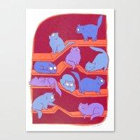 Cat Path Canvas Print