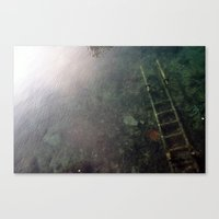 lost ladder Canvas Print