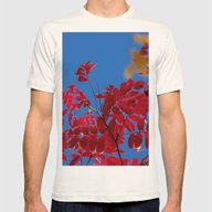 Autumn Collection 7 Mens Fitted Tee Natural SMALL