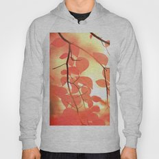 Ablaze With Color Hoody